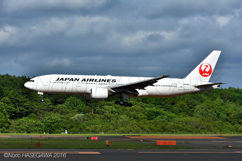 JAL's 777 in Summer  Hokkaido